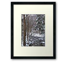 Mill Creek Meandering Framed Print