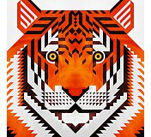 Triangle Tiger Photographic Print