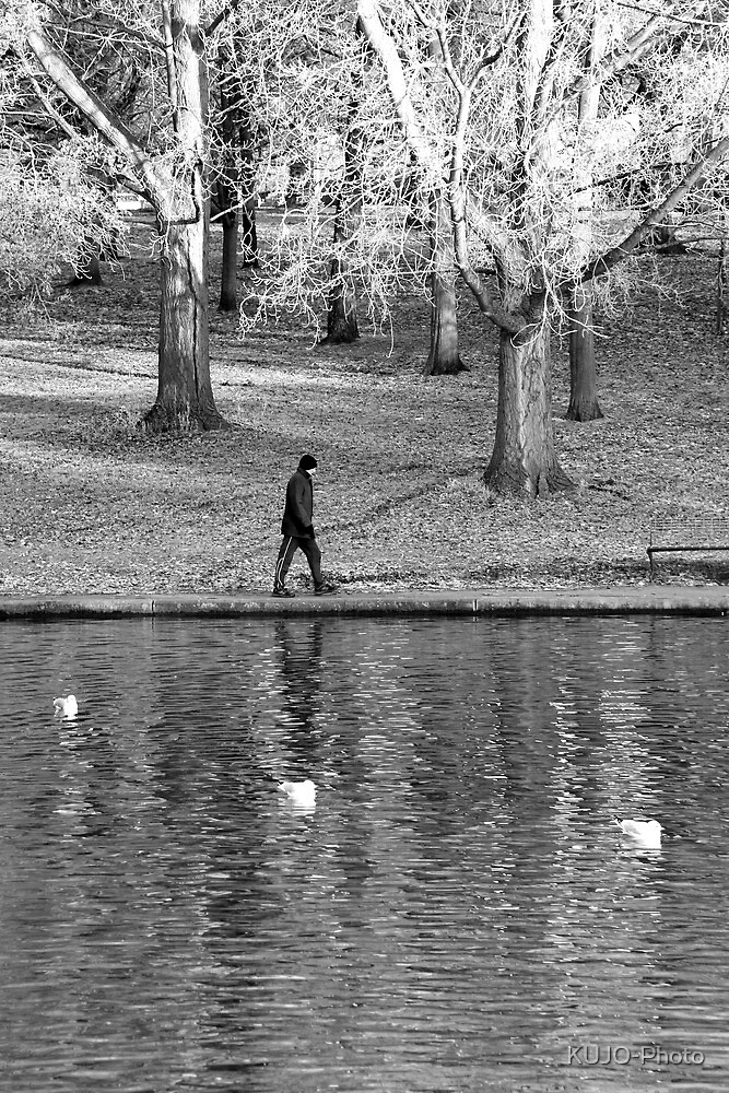 Lone Walker by KUJO-Photo