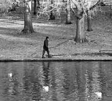 Lone Walker by KUJO-Photo