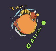 This Is Gallifrey Unisex T-Shirt