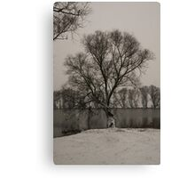 winter scene I Canvas Print