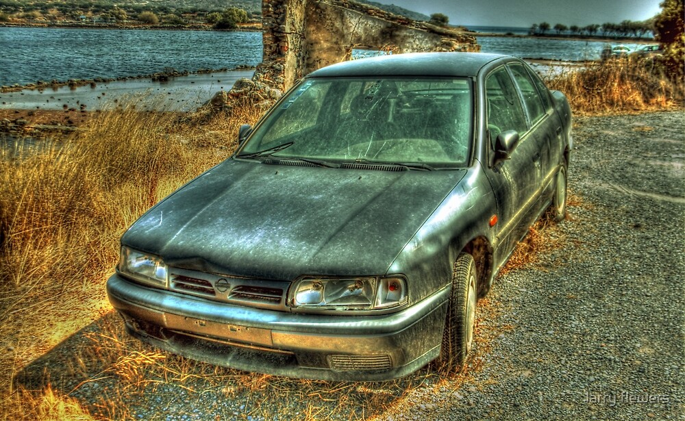Unloved and forgotten  by larry flewers