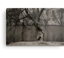 winter scene II Metal Print