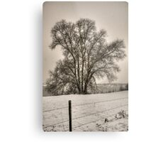 winter scene IV Metal Print