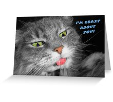 Crazy Cat Greeting Card Greeting Card