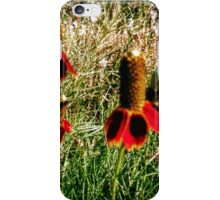 Mexican Hats iPhone Case/Skin