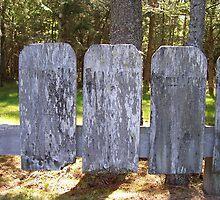 Wooden 'Stones' by Martha Medford