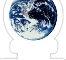 I Pledge Allegiance to the Earth Sticker