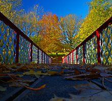 Queen's Park Bridge in the Autumn Sun by Sarah Williams