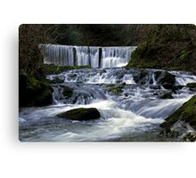 Stock Ghyll Canvas Print
