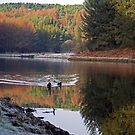Entwistle's Beauty by Sarah Williams