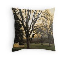 Westfall Throw Pillow