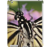 Butterfly - Swallowtail Up Close iPad Case/Skin