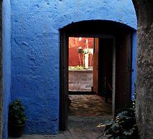Azul by Alessandro Pinto