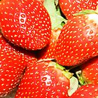 Strawberry backgrounds. by kelly-m-wall