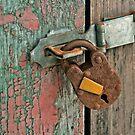 Old lock, Round Pond Maine by Dave  Higgins