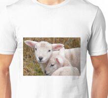 Spring Lambs T-Shirt
