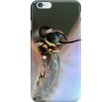 Morpho Peleides iPhone Case/Skin