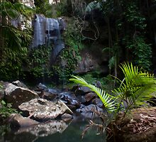 Curtis Falls - Mount Tambourine, QLD, Australia by Paul Welding