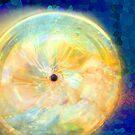 Sun Spot by Ginny Schmidt
