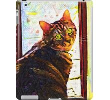 Kitten at the Door iPad Case/Skin
