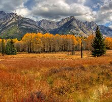 Golden Colors of Fall by JamesA1
