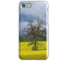 Yellow Field with trees iPhone Case/Skin
