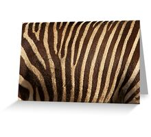Zebra Fur Greeting Card