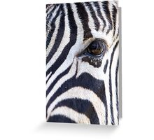 Zebra Eye soft face Greeting Card
