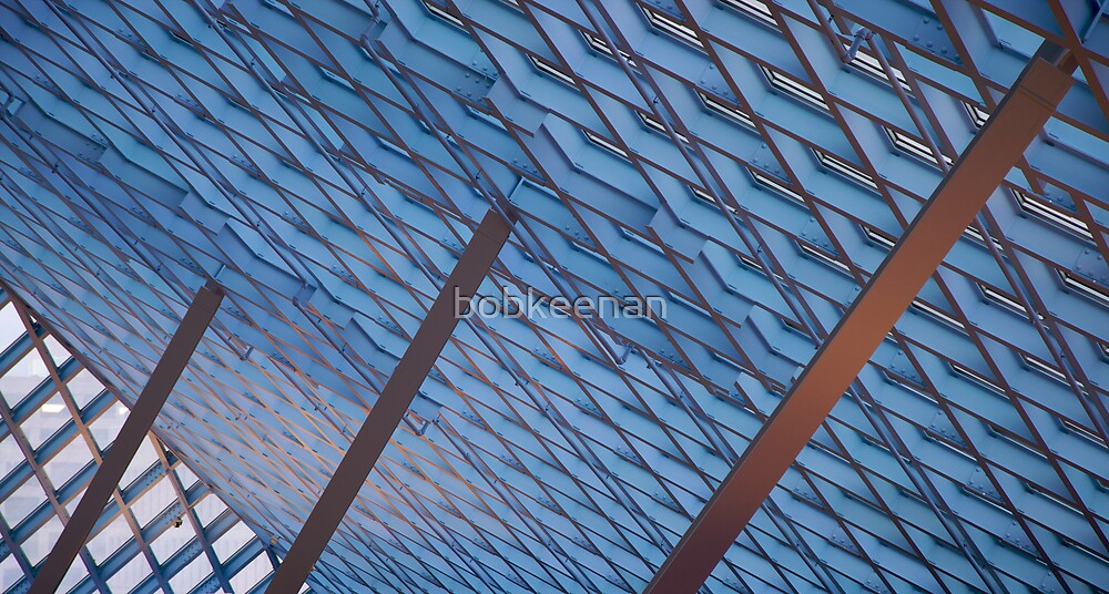 Buttressed ceiling skylights by bobkeenan