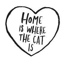 Home Is Where The Cat Is by meandthemoon