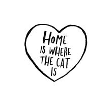 Home Is Where The Cat Is Photographic Print