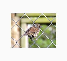 Female Dunnock Perching On Wire Unisex T-Shirt