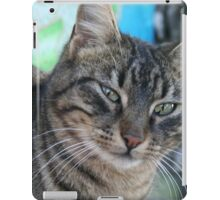 Inquisitive Tabby Cat With Green Eyes iPad Case/Skin