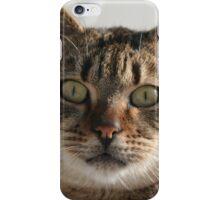Beautiful Eyed Tabby Cat iPhone Case/Skin