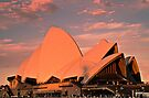 Opera House Sails in the Sunset by bazcelt