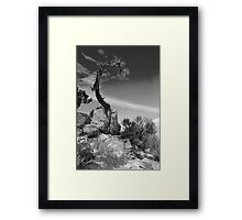 Survival - Grand Canyon Framed Print