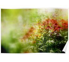 """""""Dreaming Monet """" Poster"""