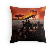 We Share The Land Throw Pillow