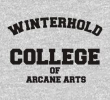 Winterhold College T Shirt by RoleyShop