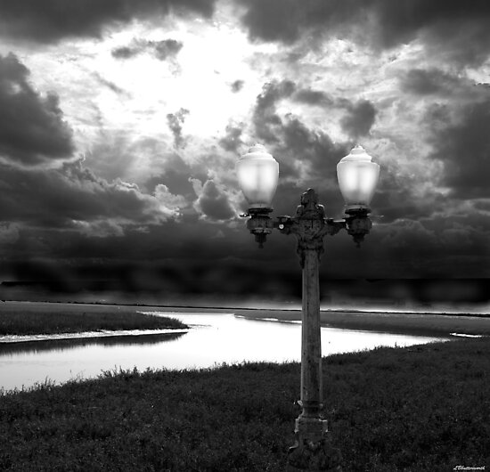 THE GUIDING LIGHT by Larry Butterworth