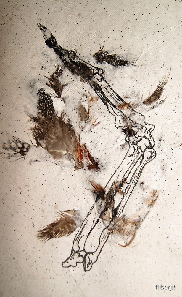 Wren Wing by fliberjit