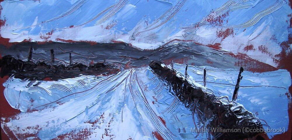 'Road to Malham' by Martin Williamson (©cobbybrook)