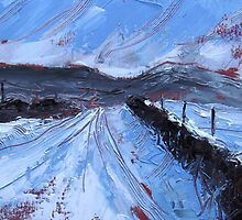 'Road to Malham' by Martin Williamson (©cobbybrook)