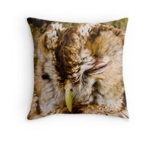 Tawny Owl trying to be a tree! Throw Pillow