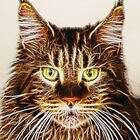 Fractalius Maine Coon Cat by AntiCollegial
