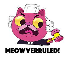 Gravity Falls: Meowverruled! Photographic Print