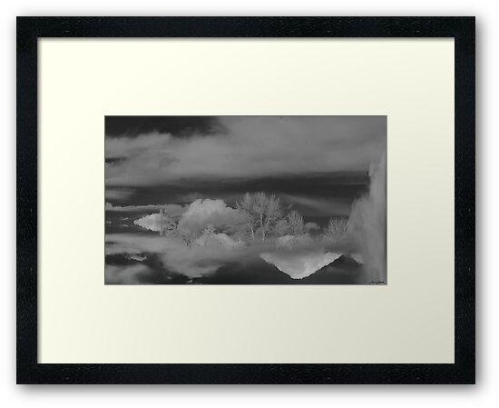 Dream cloud #78 by TIMOTHY  POLICH