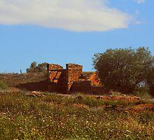 Ruins in a field of wild-flowers by myraj